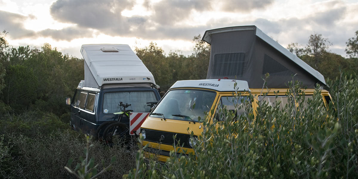 Two Insured Campervans in the nature